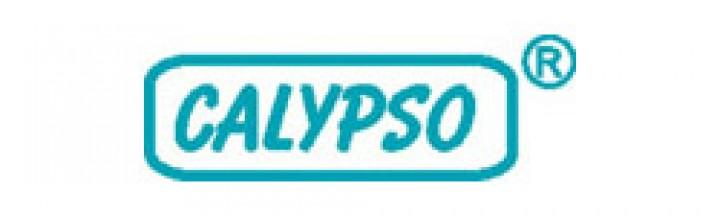 Calypso Lattenrostbausatz 90 x 200cm Standard