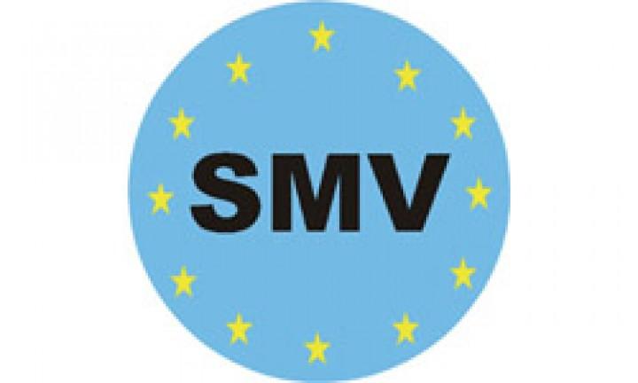 SMV 8 Zoll Luftfedersystem für Fiat Ducato ab Baujahr 1994