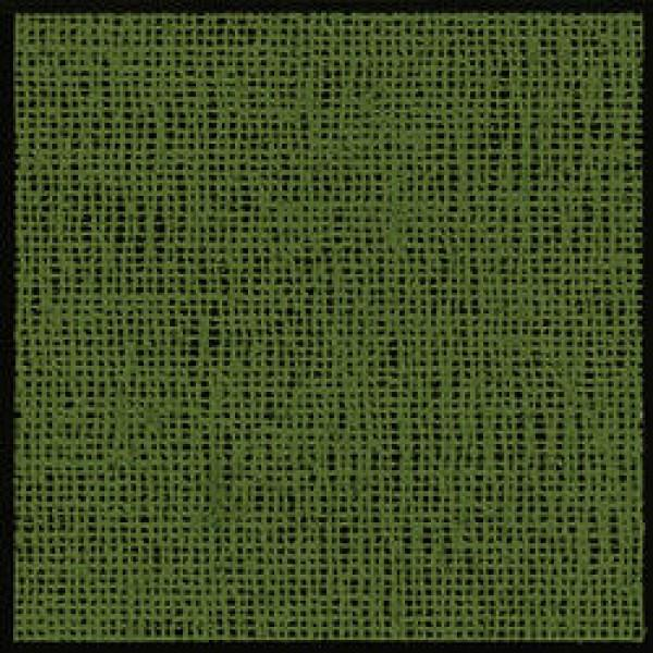 Wehncke Friedola Aerotex Vorzelt Teppich grün online kaufen