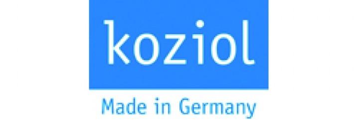 Koziol Wandhaken Moritz transparent anthrazit