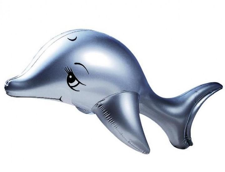 Schwimmtier Flipper