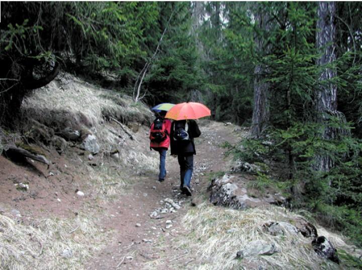 EuroSchirm 'light trek automatic' schwarz