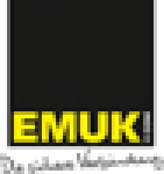 EMUK Wohnwagenspiegel für VW Bus T5 Facelift 2009 ab 10/2009 Amarok ab 2010