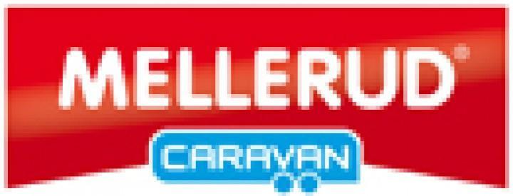 Reisemobil und Caravan Grundreiniger