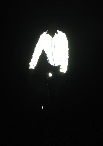 Proviz 'Reflect 360' Jacket, Herren XXL
