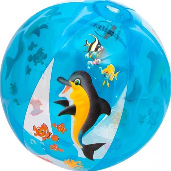 Strandball Delphin