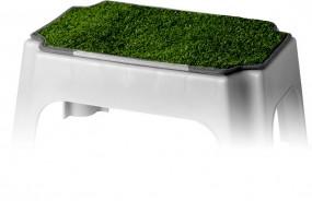 Trittstufen-Teppich Stepper grün