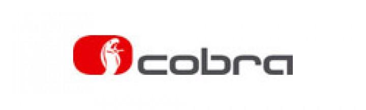 CAN-Alarmsystem Cobra 4615 mit Funksirene Fiat Ducato ab 2011