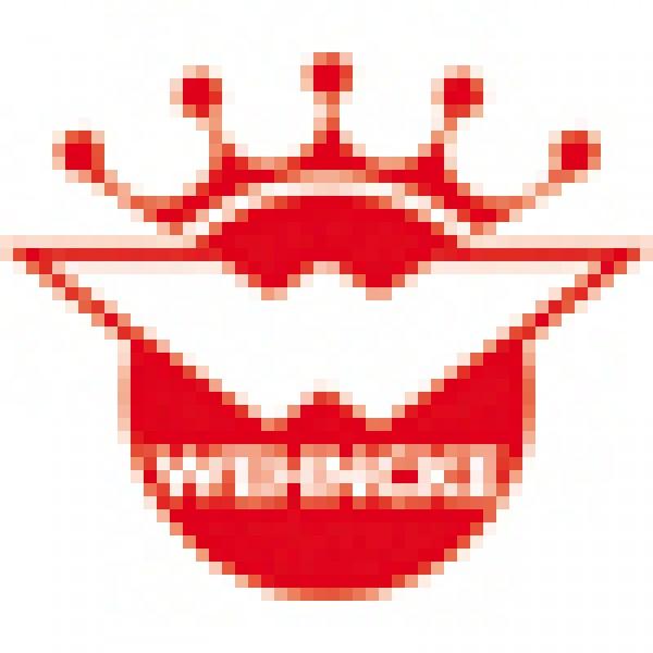 Wehncke Schnell-Chlor-Tabletten 1 kg